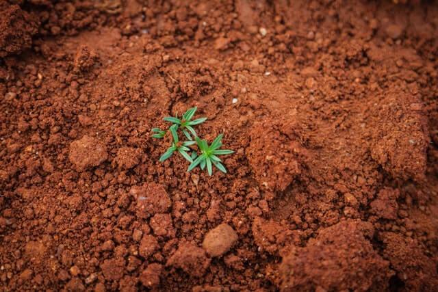 土の捨て方